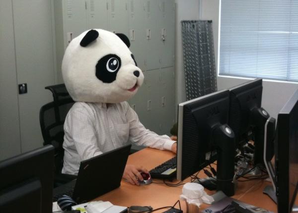 従来より活躍中のパンダ