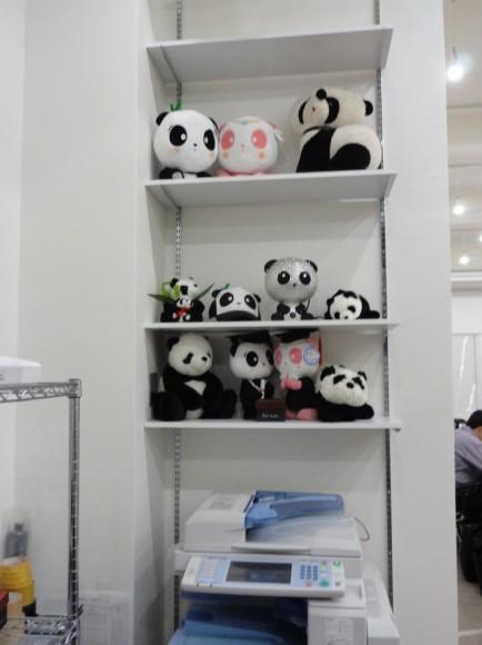 オフィス内に設置の棚が、パンダ専用棚になりました