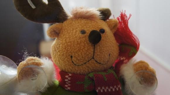 クリスマスだからトナカイですよね、、、クマみたい、、、