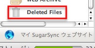 Deleted Filesの場所
