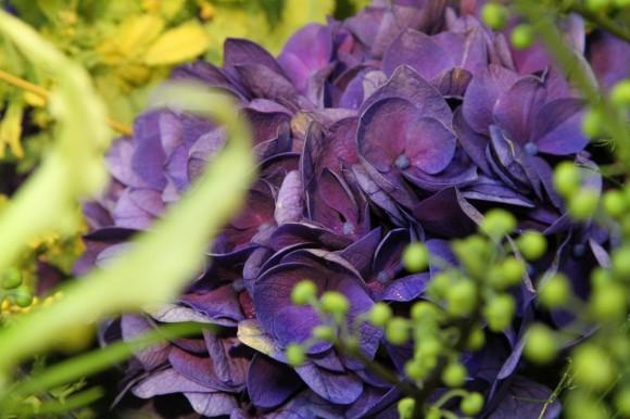 お花の贈り物(その4)