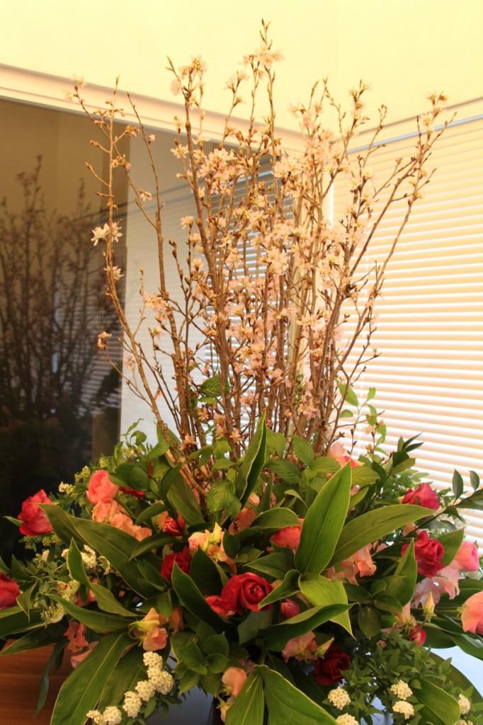 パンダスタジオのエントランスのお花(小山大蔵さんの4月4日の作品 写真3)