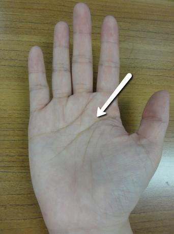 手相右手頭脳線