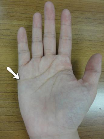 手相右手感情線