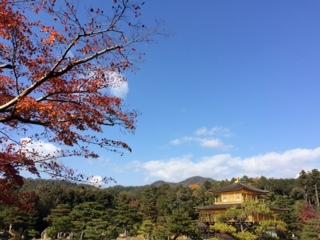 京都金閣寺 紅葉 11月23日現在