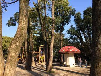 京都府立植物園 きのこの図書館