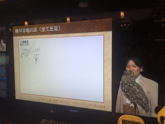 ミミズク講座 パンダスタジオ渋谷